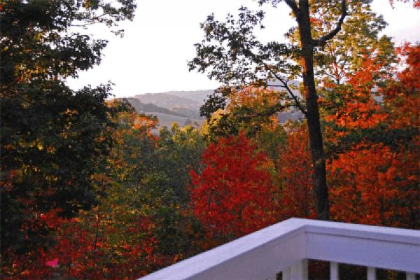 Blairsville Cabin View